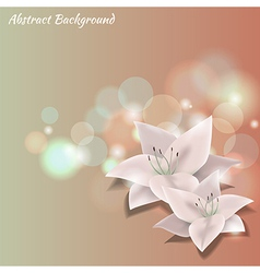 colorful background with flowers vector image