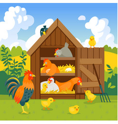 Henhouse with funny birds on a green lawn vector