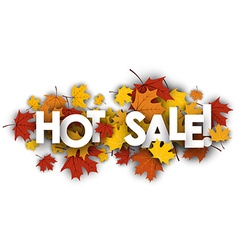 Hot sale banner with maple leaves vector image