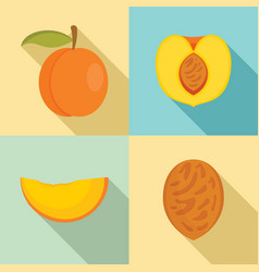 peach tree slices fruit half icons set flat style vector image