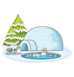 scene with three seals and igloo vector image