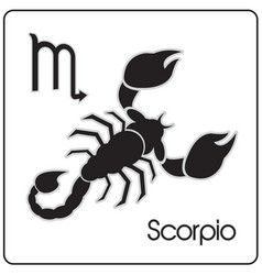 Scorpio zodiac astrology sign vector