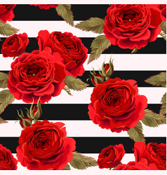 seamless pattern with roses ground vector image