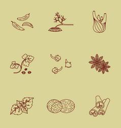 Spices set contour icons vector