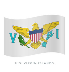 us virgin islands waving flag icon vector image