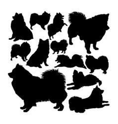 volpino italiano dog animal silhouettes vector image
