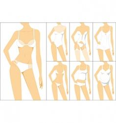 female underwear vector image vector image