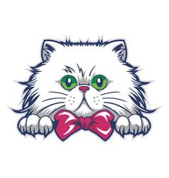 Funny cat mascot cartoon vector
