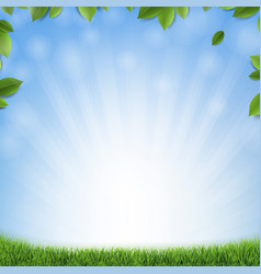 Green leaves with blue background and green grass vector