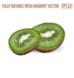 Sliced ripe kiwi on a white background vector