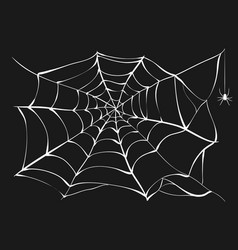 White cobweb and spider on black background vector