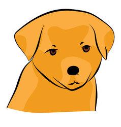 Golden Retriever Puppy vector image vector image