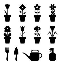 pot flower set vector image