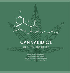 background banner poster with cbd formula vector image