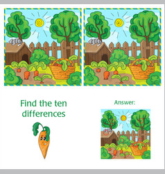 Find differences between the two images carrots in vector