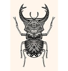 Hand drawn beetle vector