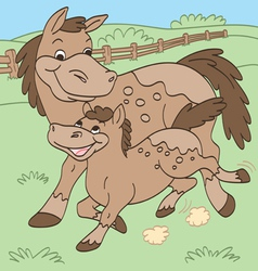 Mother and Baby Horses vector image