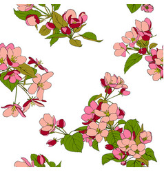 seamless pattern with apple blossoms vector image