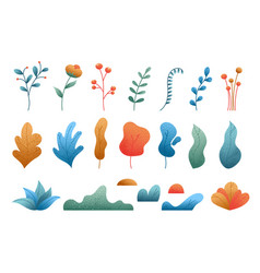 set plant leaves and flowers isolated vector image