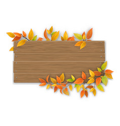 Wooden sign with autumn tree branch vector