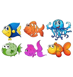 Five different kinds of sea creatures vector image