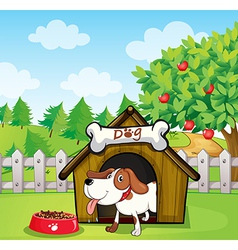 A dog inside doghouse with dogfood vector