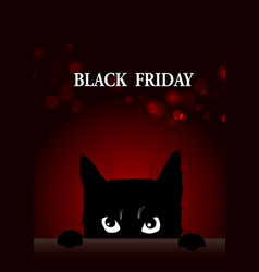 Black friday poster with angry cat vector