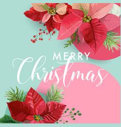 Christmas winter poinsettia flower banner graphic vector
