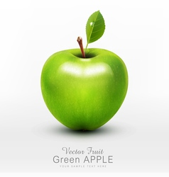 Green apple with green leaf isolated vector