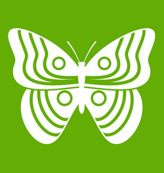 stripped butterfly icon green vector image