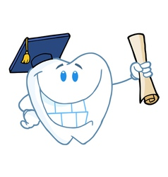 Graduate Tooth Holding A Diploma vector image vector image