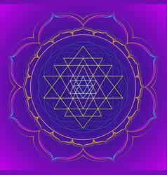 color mandala sacred geometry vector image