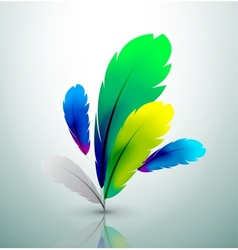 Colorful feather design vector