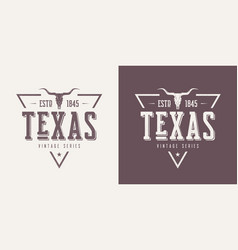 texas state textured vintage t-shirt and vector image