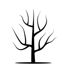 tree without leaves vector image vector image