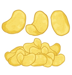 potato chips vector image vector image
