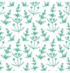 seamless pattern with savory vector image