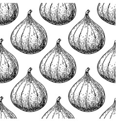 Fig seamless pattern drawing hand drawn vector