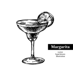 Hand drawn sketch cocktail margarita vintage vector image