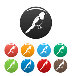 magpie bird icons set color vector image