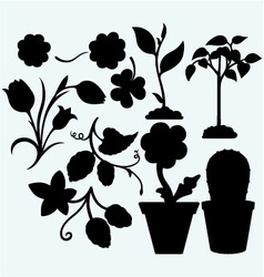 Set plants vector image