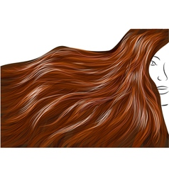 beautiful brown hair vector image vector image