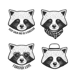 hand drawn cartoon raccoon head prints set vector image vector image