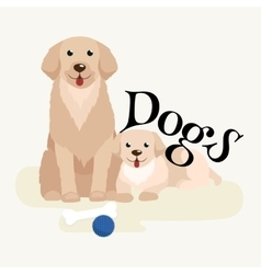 Small puppy and dog on pets background domestic vector image
