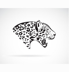a leopard on white background wild animals easy vector image