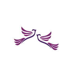 couple doves logo vector image
