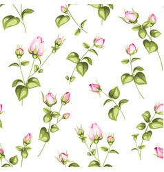 Luxurious rose wallapaper vector