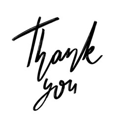 thank you hand drawn lettering isolated vector image