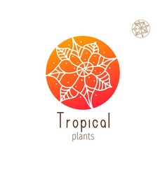 Tropical floral herb vector