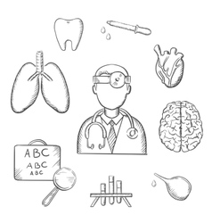Human organs and medical sketch icons vector image